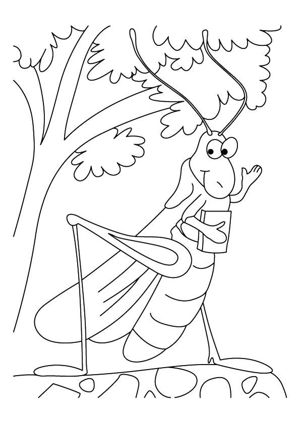 Dibujos De Saltamontes Animado Para Colorear Pintar E