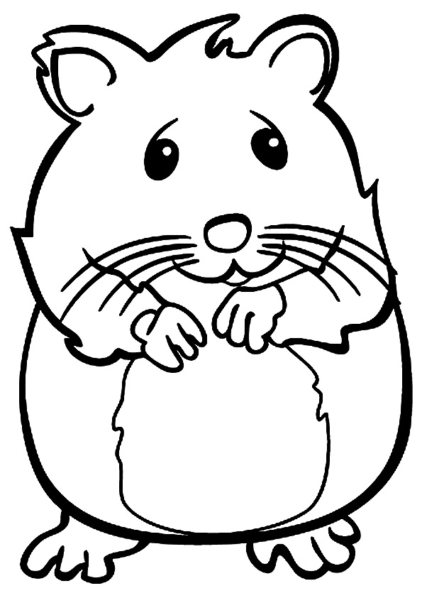 dibujos de sonriendo hamster para colorear  pintar e imprimir