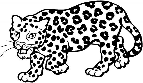 Dibujos De Bebé Leopardo Para Colorear Pintar E Imprimir