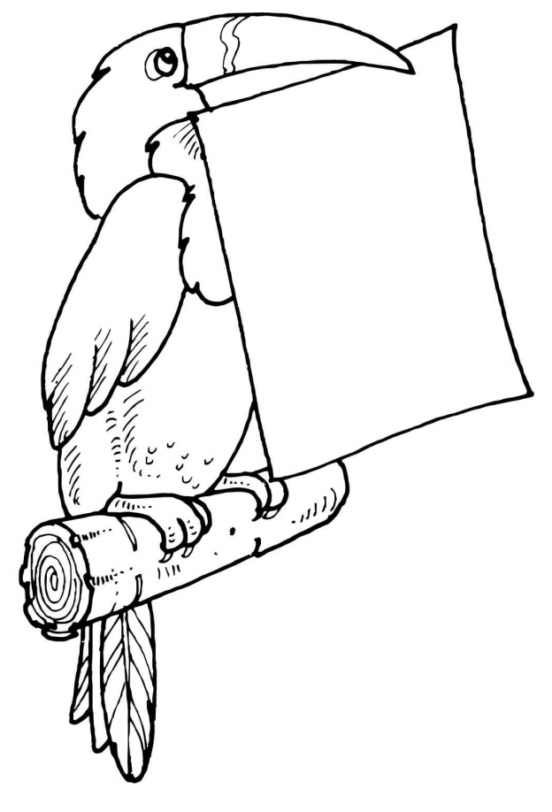 Dibujos De Tucán Sosteniendo Carta Para Colorear Pintar E