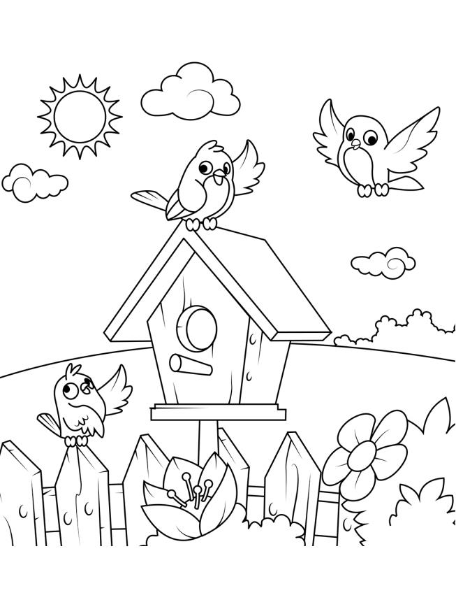 Dibujos De Pájaros Y Su Casa Para Colorear Pintar E Imprimir