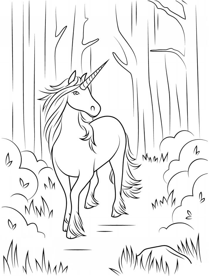 Dibujos De Unicornio En El Bosque Para Colorear Pintar E Imprimir