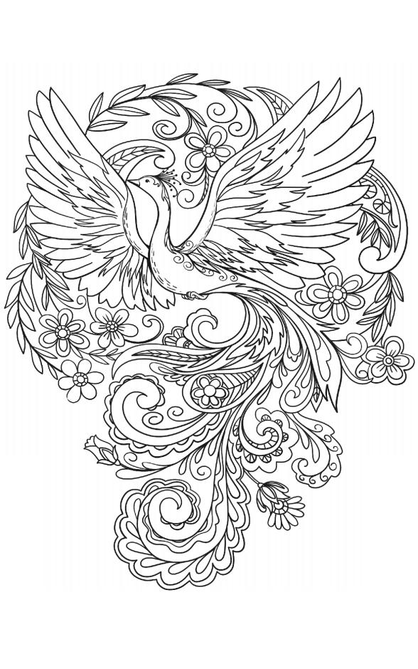 Dibujos De Pavo Real Con Flores Para Colorear Pintar E