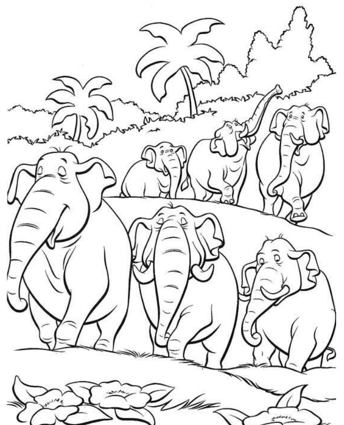 Dibujos De Elefantes En La Selva Para Colorear Pintar E