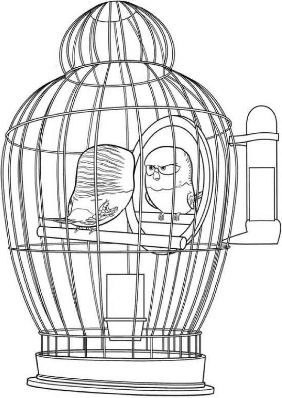Dibujos De Alitas En Jaula Para Colorear Pintar E Imprimir